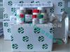 囊虫病IgM抗体诊断试剂