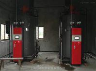 配套玉米漂烫机用蒸汽锅炉