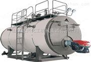 龍興集團燃氣蒸汽鍋爐