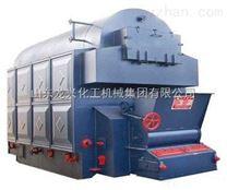 山東龍興鍋爐生物質蒸汽鍋爐
