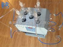 COD快速消解器 COD快速消解仪BR-903C