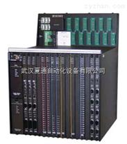 TRICONEX 3805E(英維思系列)3805E