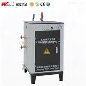 电蒸汽发生器-蒸汽清洗设备