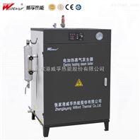 LDR免检电热蒸汽发生器价格
