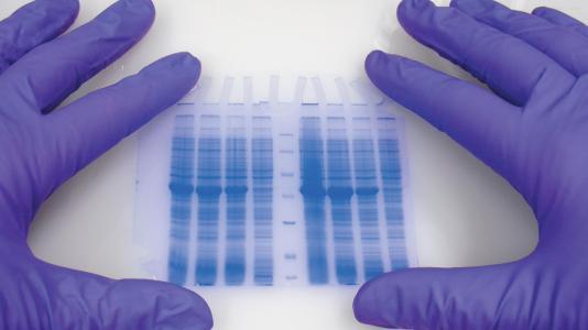 现代制药拟投14.5亿元建设新型制剂项目